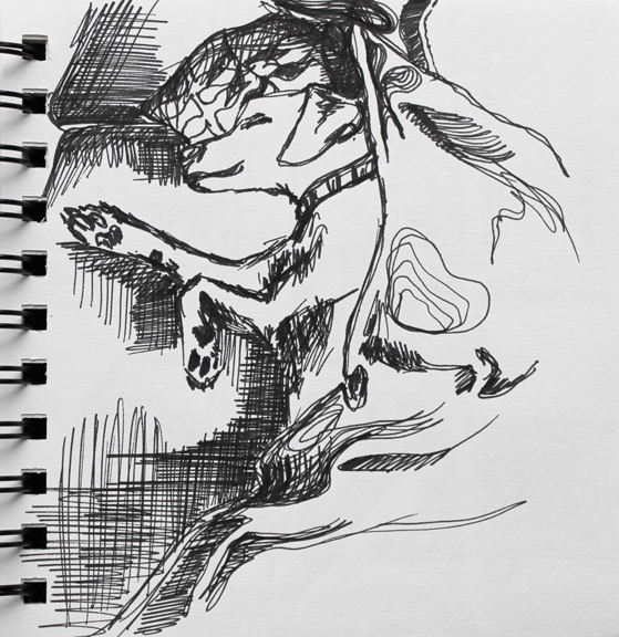 sketch no. 32