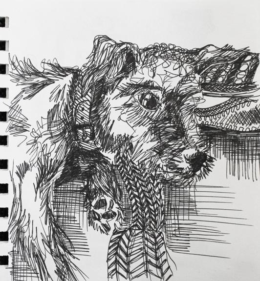 sketch no. 51