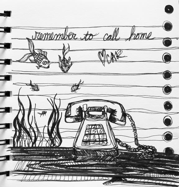 sketch no. 79