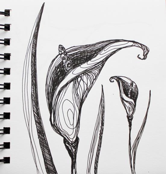 sketch no. 88