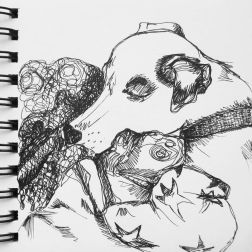 sketch no. 132