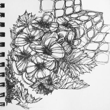 sketch no. 163