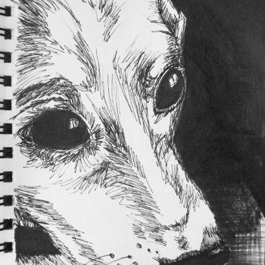 sketch no. 164
