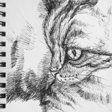 sketch no. 165