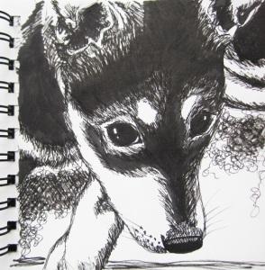 sketch no. 168