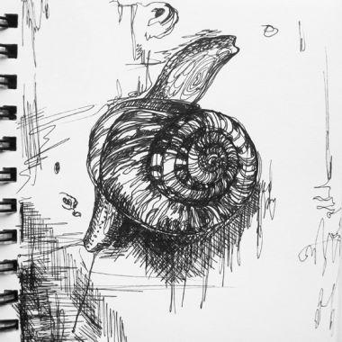 sketch no. 170