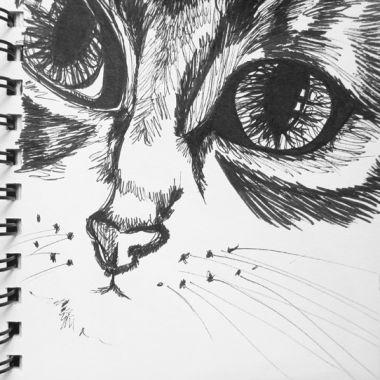 sketch no. 171