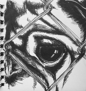 sketch no. 173