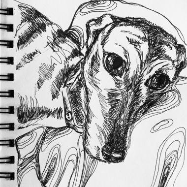 sketch no. 174