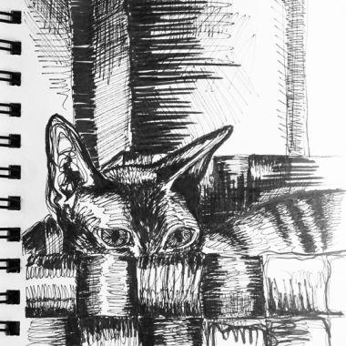 sketch no. 175
