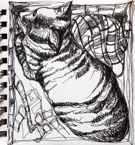 sketch no. 177