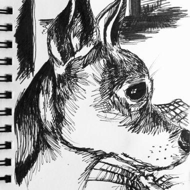 sketch no. 195
