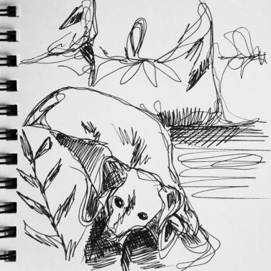sketch no. 226