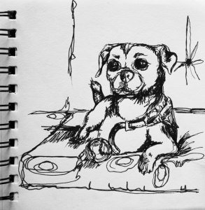sketch no. 244