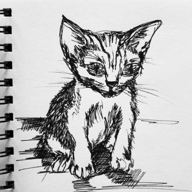 sketch no. 245