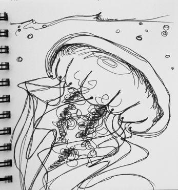 sketch no. 271