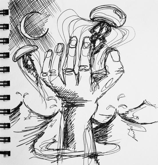 sketch no. 305