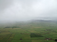 But right before it ruined my island vacation forever, I snapped this shot of a patchwork of fields.