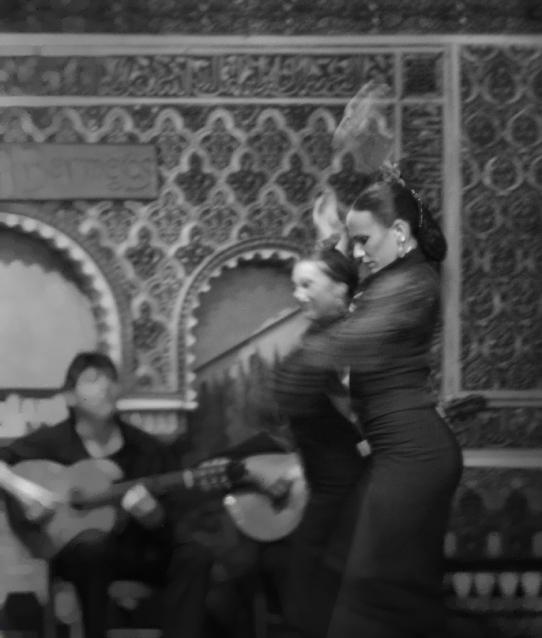 Flamenco Dancers, 2013