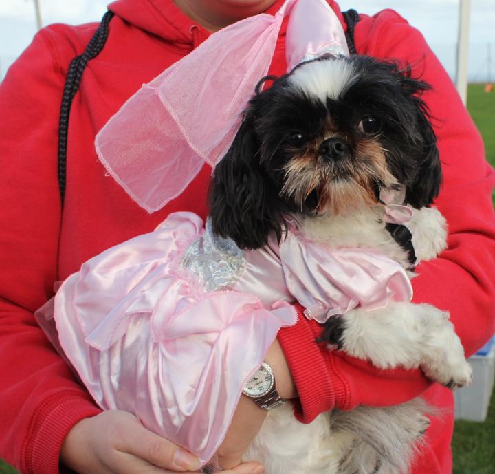 Best Costume winner--beautiful Princess Bailey.