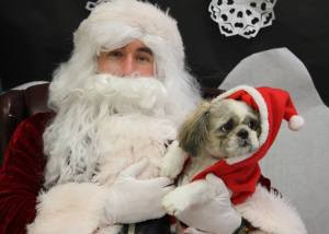Santa Paws at the kennel, 2013