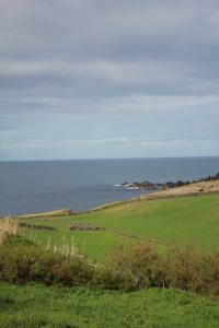 Ocean and fields near our house in Vila Nova.