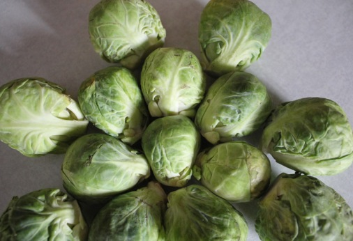 These are b russell sprouts.